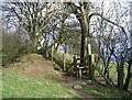 SJ2536 : Offa's Dyke near Bronygarth by Peter Craine
