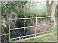 TL7604 : Sandon Brook by Malcolm Reid