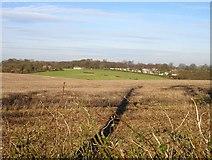 TQ8854 : Hogbarn Holiday Village by Penny Mayes
