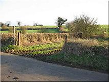 ST8079 : Public footpath to Westfield farm by Phil Williams