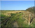 NU1931 : Farmland by Walter Baxter