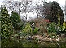 SJ6651 : Stapeley Water Gardens by Tom Pennington