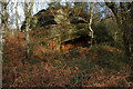SO8282 : Rock outcrop, Kinver Edge by Philip Halling