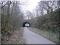 NZ2253 : Consett to Sunderland cycle path by brian clark