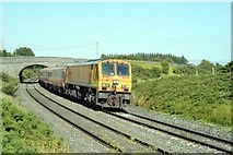 N7514 : Dublin to Cork mainline by Wilson Adams