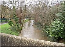 TQ0682 : River Pinn by Rob Emms