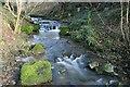 NZ0914 : Stream Below Sledwich Hall by Mick Garratt