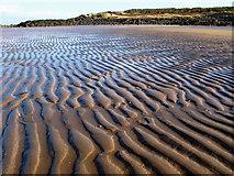 NT4884 : Black Rocks and Beach, Gullane Bay by Lisa Jarvis