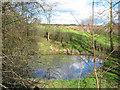 SJ6250 : Small mere, near Edleston Brook by Espresso Addict
