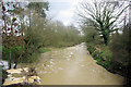 TQ7049 : River Beult in Spate by Robin Webster