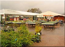 SJ7243 : Bridgemere Garden World by Espresso Addict