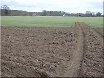 SU6878 : Farmland near Tinker's Green by Graham Horn