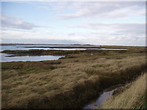 TM2222 : Salt marsh near Kirby-Le-Soken Quay by Deb Turnbull