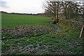 SK4714 : Farmland near Charley Mill Farm by Kate Jewell