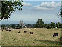TA0339 : Beverley Minster from the Westwood by John Phillips