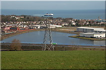 D4002 : The Redlands lagoon, Larne by Albert Bridge
