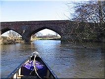NT5374 : Bridge and distant swan by Alastair Seagroatt