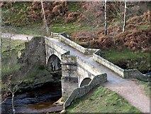SK1695 : Slippery Stones Pack Horse Bridge by John Fielding