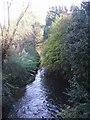 SO8494 : Smestow Brook by John M