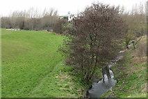 O1840 : Santry River, Kilmore, Dublin 17 by Peter Gerken