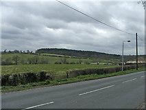 TQ3097 : Hog Hill from Hadley Road, Enfield by Christine Matthews