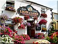 SW6028 : Lion & Lamb Public House by Mari Buckley