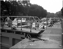 SU9777 : Romney Lock, River Thames by Dr Neil Clifton