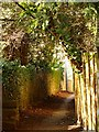 ST5575 : Path running beside the church by Linda Bailey