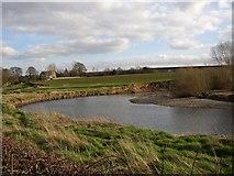SE2645 : The River Wharfe, Castley by Humphrey Bolton