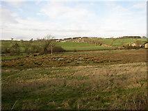 SE2645 : Boggy valley, Castley by Humphrey Bolton