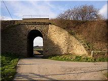 SE2645 : Bridge under the railway, Castley by Humphrey Bolton
