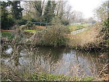 TQ0372 : River Colne by Ray Stanton