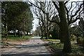 SO9477 : Woodfield Lane by Geoff Gartside