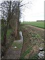 TL1634 : Field ditch/stream at Ramerick Bottom by Jeff Tomlinson