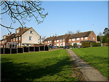 TQ2495 : Mayhill Road by Martin Addison