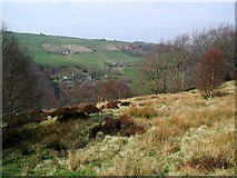 SE0023 : Marshaw Bank, Cragg Vale by Paul Glazzard