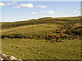 NT9910 : Site of ancient castle at Alnham by Kenneth   Ross