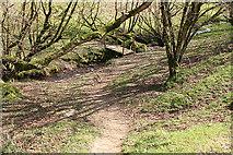 SS8927 : Dulverton: footbridge over stream by Martin Bodman