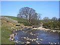NY7704 : The River Eden at Lammerside by John Illingworth