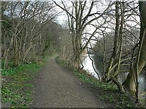 SE2436 : Rein Road and River Aire by Rich Tea
