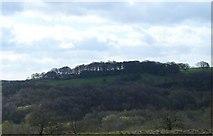 SJ8149 : View from Wood Lane by Steve Lewin