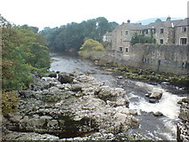 SE0063 : River Wharfe at Linton Falls by Frank Glover
