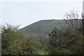 SO4795 : Looking up Caer Caradoc Hill by Chris Carlson