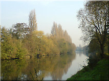 TQ0866 : River Thames with Desborough Island to the left by Contrary-Mary