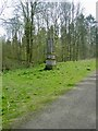 TL1040 : The Obelisk in Chicksands Wood from the NE by John Yaxley