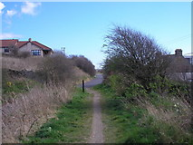NO4202 : The old railway line by Sandy Gemmill