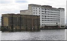 TQ4180 : Royal Victoria Dock: Spillers Millennium Mills by Nigel Cox
