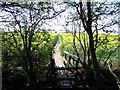 SK3623 : Footpath through oilseed rape by E Gammie