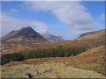 NN2256 : Looking towards Glencoe, the wood at Altnafeadh in the foreground by Steve Jones