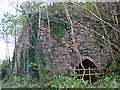 SX2354 : Disused lime kiln by the riverbank by Tony Atkin